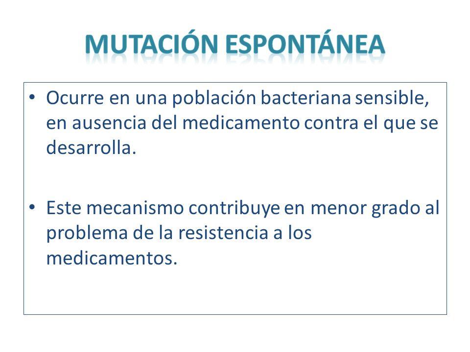 MUTACIÓN ESPONTÁNEA Ocurre en una población bacteriana sensible, en ausencia del medicamento contra el que se desarrolla.
