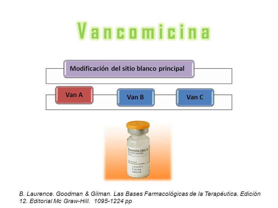 V a n c o m i c i n a Modificación del sitio blanco principal Van A