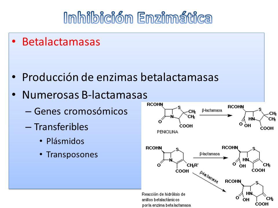 Inhibición Enzimática