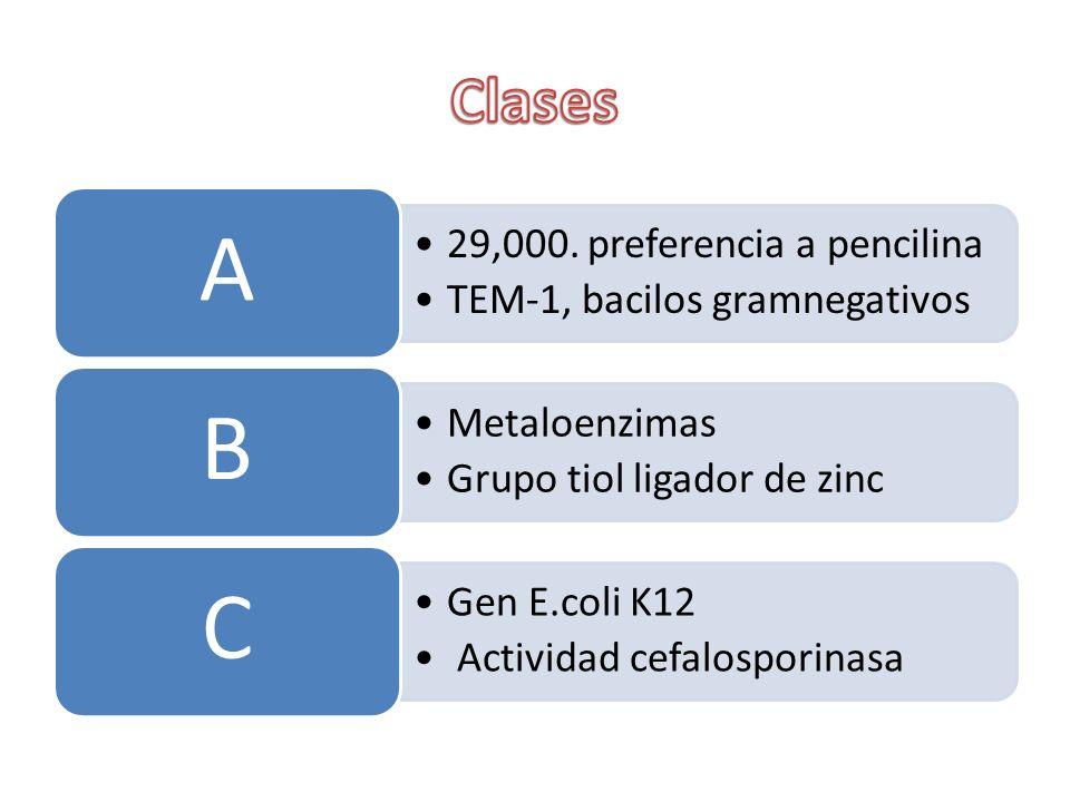 A B C Clases 29,000. preferencia a pencilina