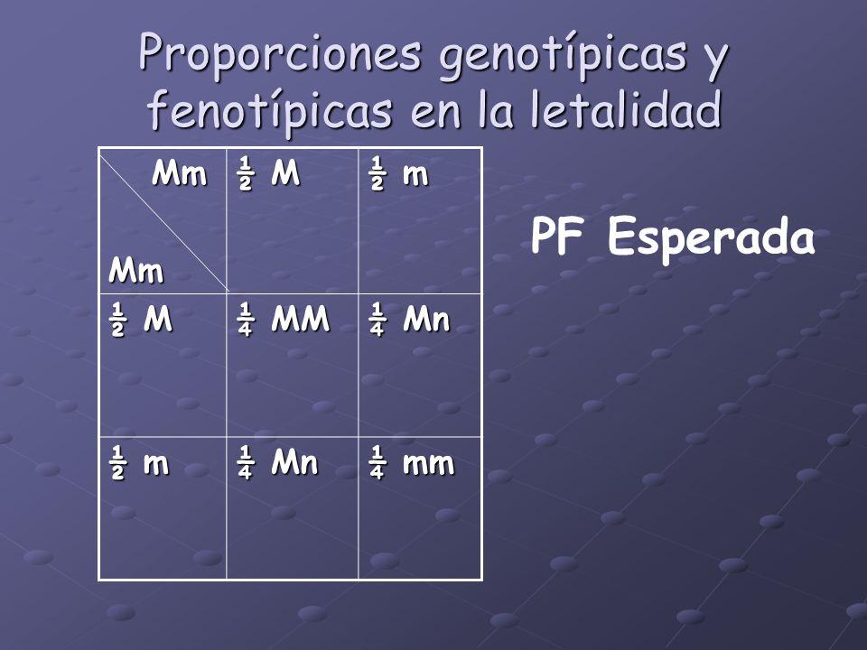 Proporciones genotípicas y fenotípicas en la letalidad