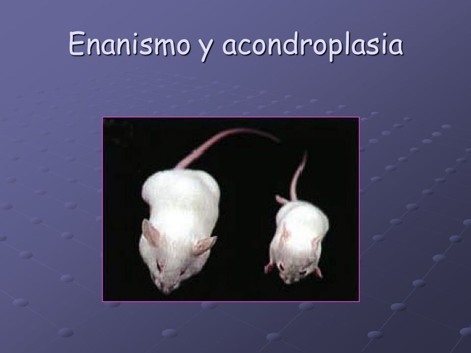 Enanismo y acondroplasia