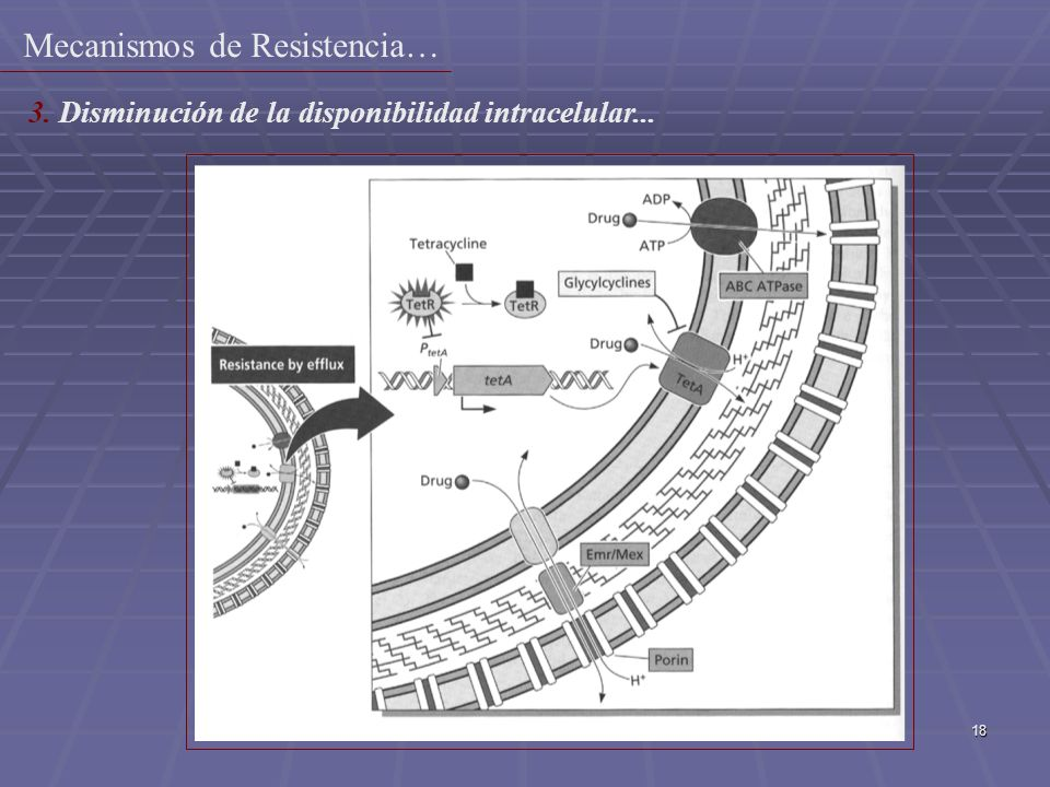Mecanismos de Resistencia…