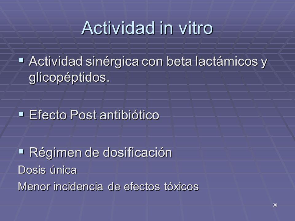 Actividad in vitro Actividad sinérgica con beta lactámicos y glicopéptidos. Efecto Post antibiótico.