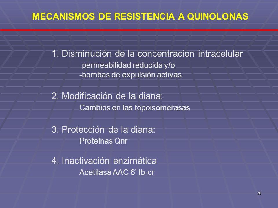 MECANISMOS DE RESISTENCIA A QUINOLONAS