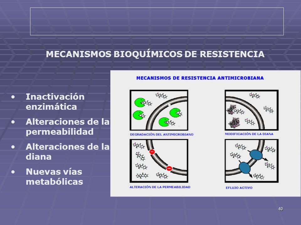 MECANISMOS BIOQUÍMICOS DE RESISTENCIA
