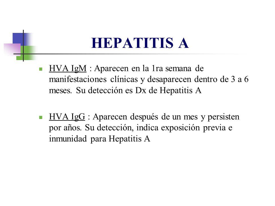 HEPATITIS A HVA IgM : Aparecen en la 1ra semana de manifestaciones clínicas y desaparecen dentro de 3 a 6 meses. Su detección es Dx de Hepatitis A.