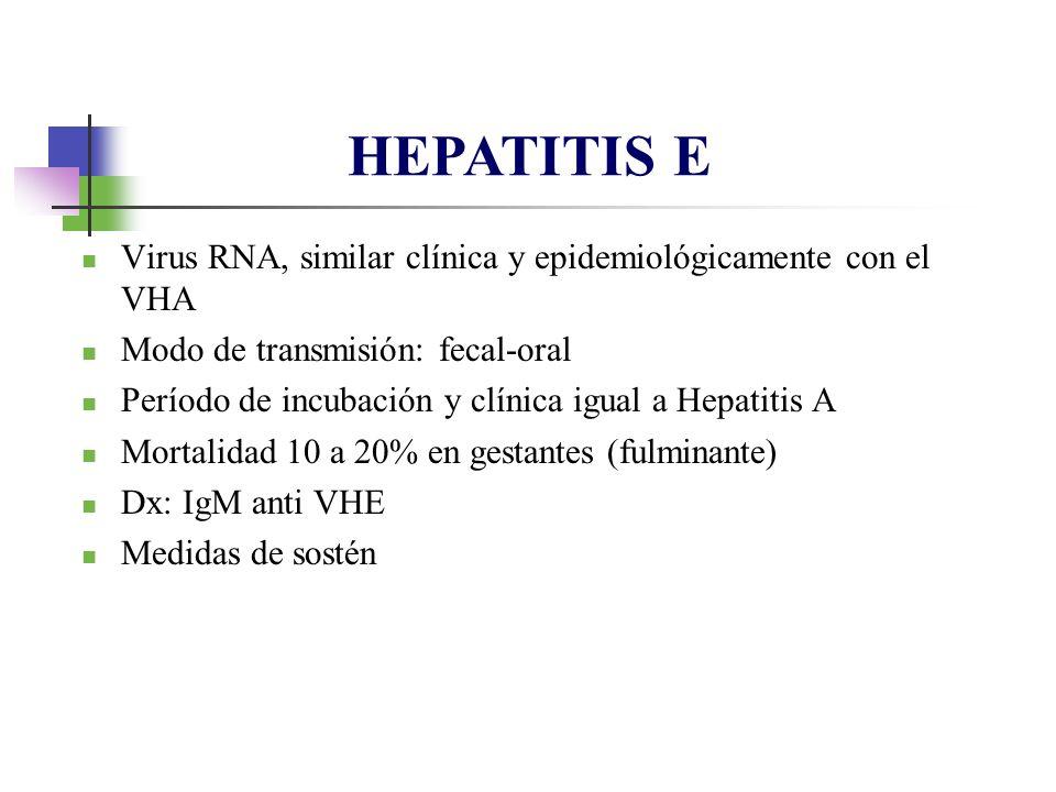 HEPATITIS E Virus RNA, similar clínica y epidemiológicamente con el VHA. Modo de transmisión: fecal-oral.