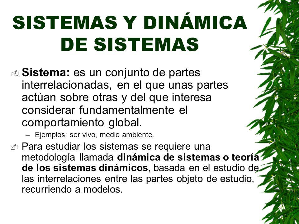 SISTEMAS Y DINÁMICA DE SISTEMAS