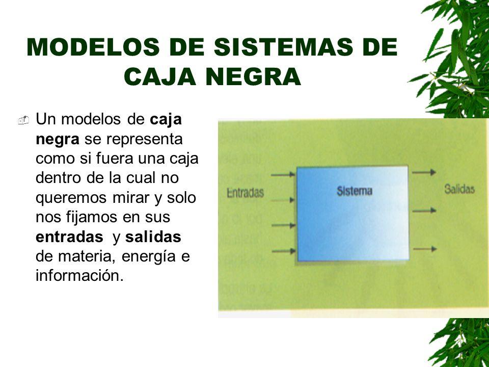 MODELOS DE SISTEMAS DE CAJA NEGRA