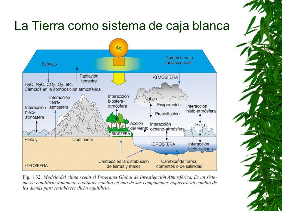 La Tierra como sistema de caja blanca