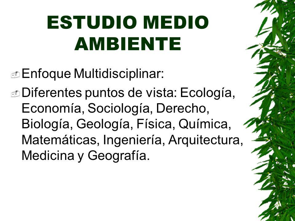 ESTUDIO MEDIO AMBIENTE