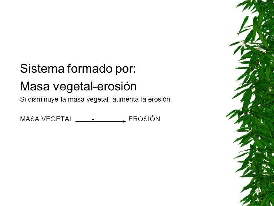 Sistema formado por: Masa vegetal-erosión