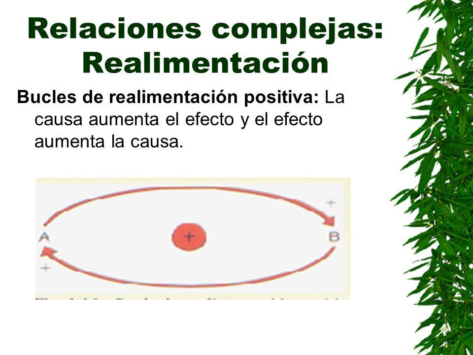 Relaciones complejas: Realimentación