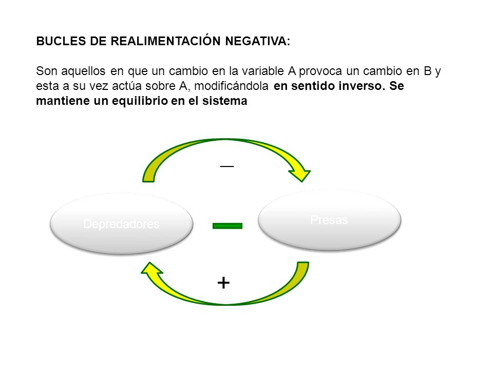 + BUCLES DE REALIMENTACIÓN NEGATIVA: