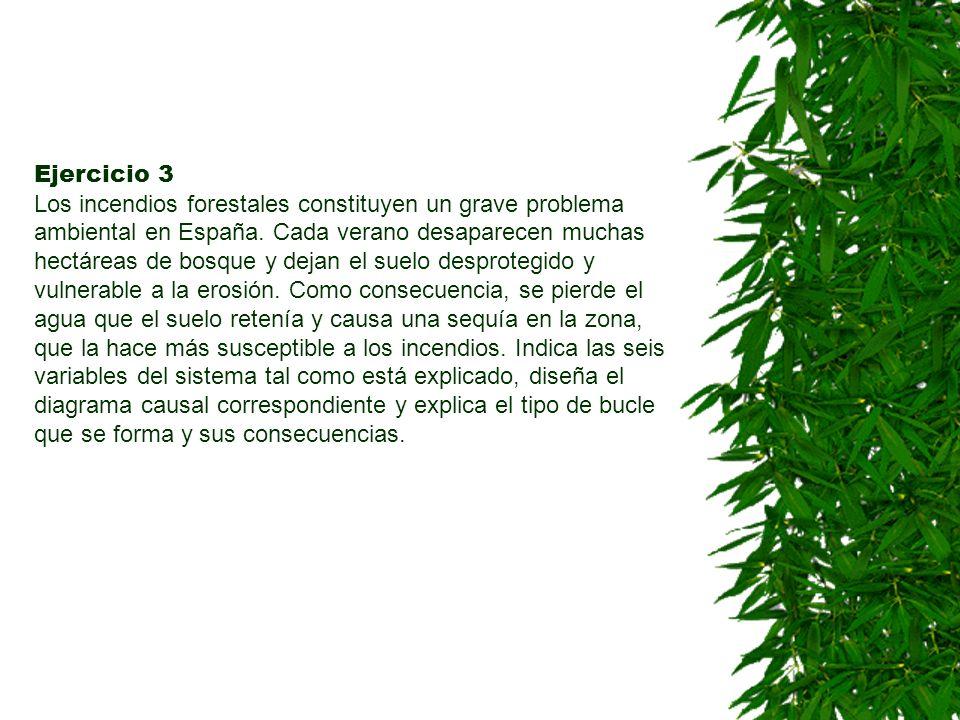 Ejercicio 3 Los incendios forestales constituyen un grave problema ambiental en España.