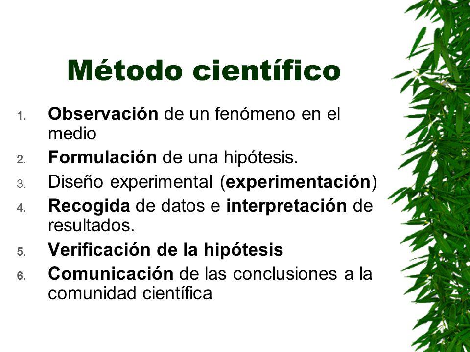 Método científico Observación de un fenómeno en el medio