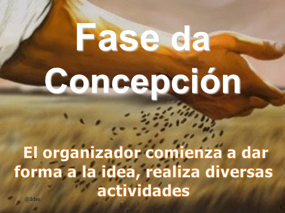 Fase da Concepción El organizador comienza a dar forma a la idea, realiza diversas actividades.