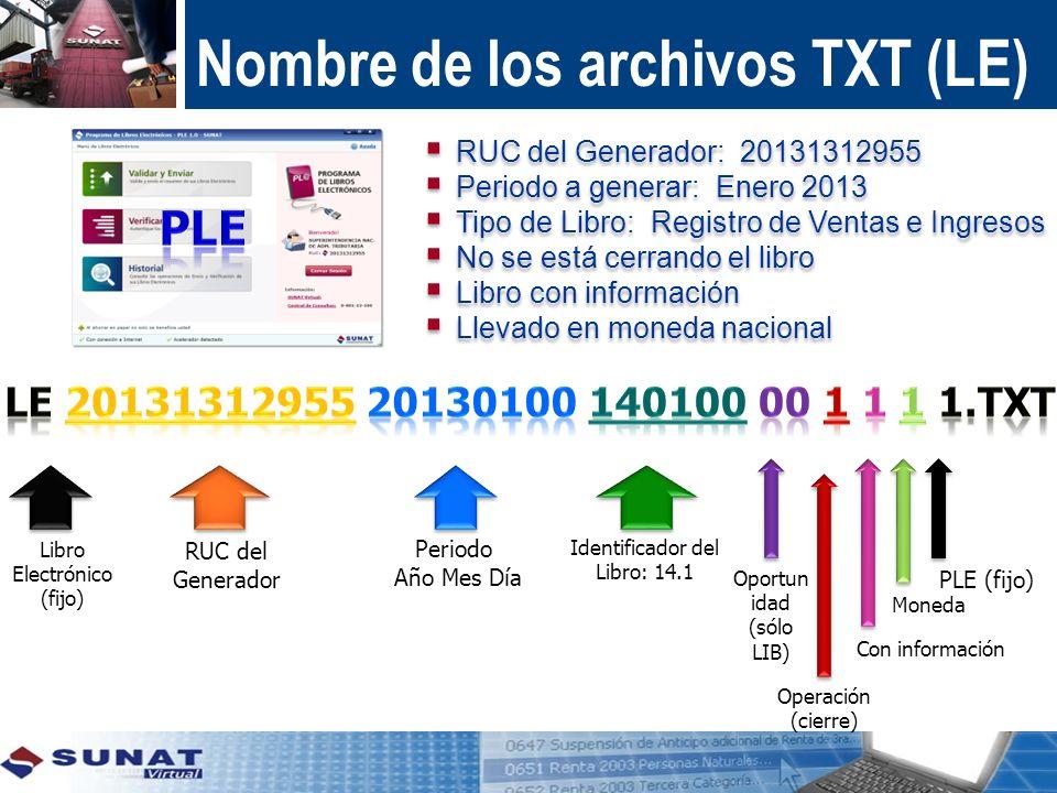 Nombre de los archivos TXT (LE)