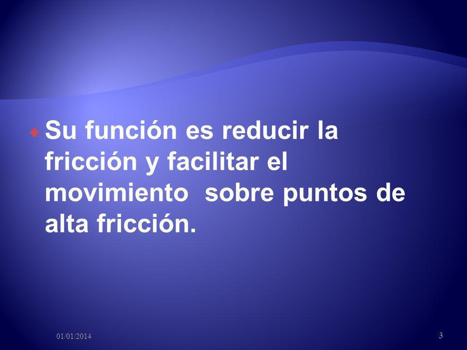Su función es reducir la fricción y facilitar el movimiento sobre puntos de alta fricción.