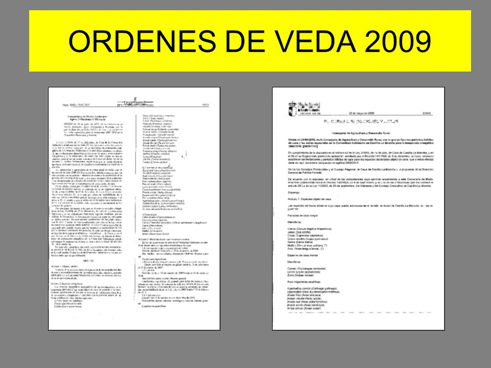 ORDENES DE VEDA 2009
