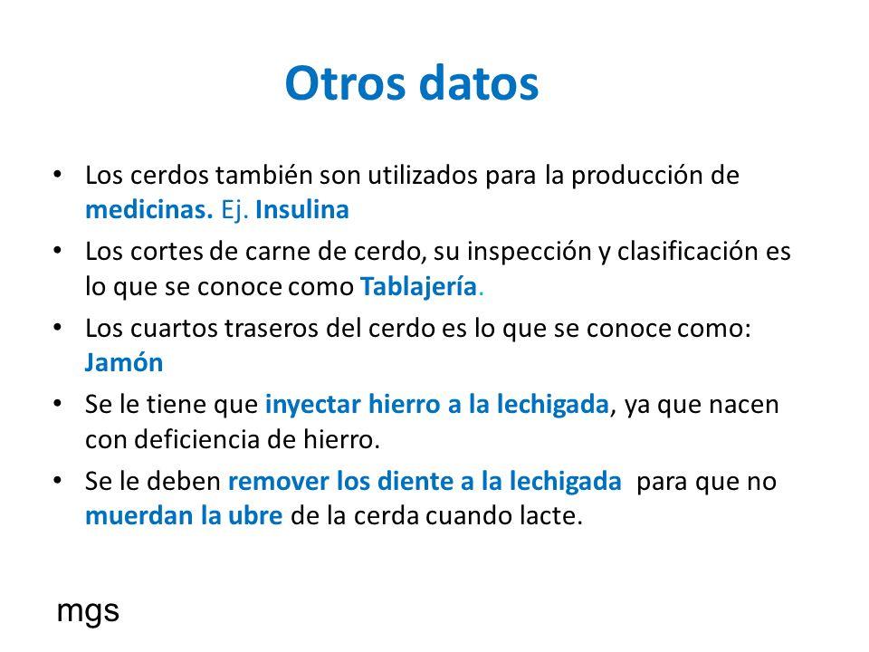 Otros datos Los cerdos también son utilizados para la producción de medicinas. Ej. Insulina.