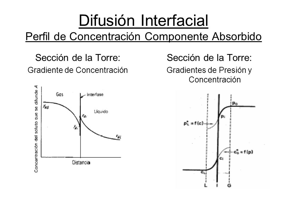 Difusión Interfacial Perfil de Concentración Componente Absorbido