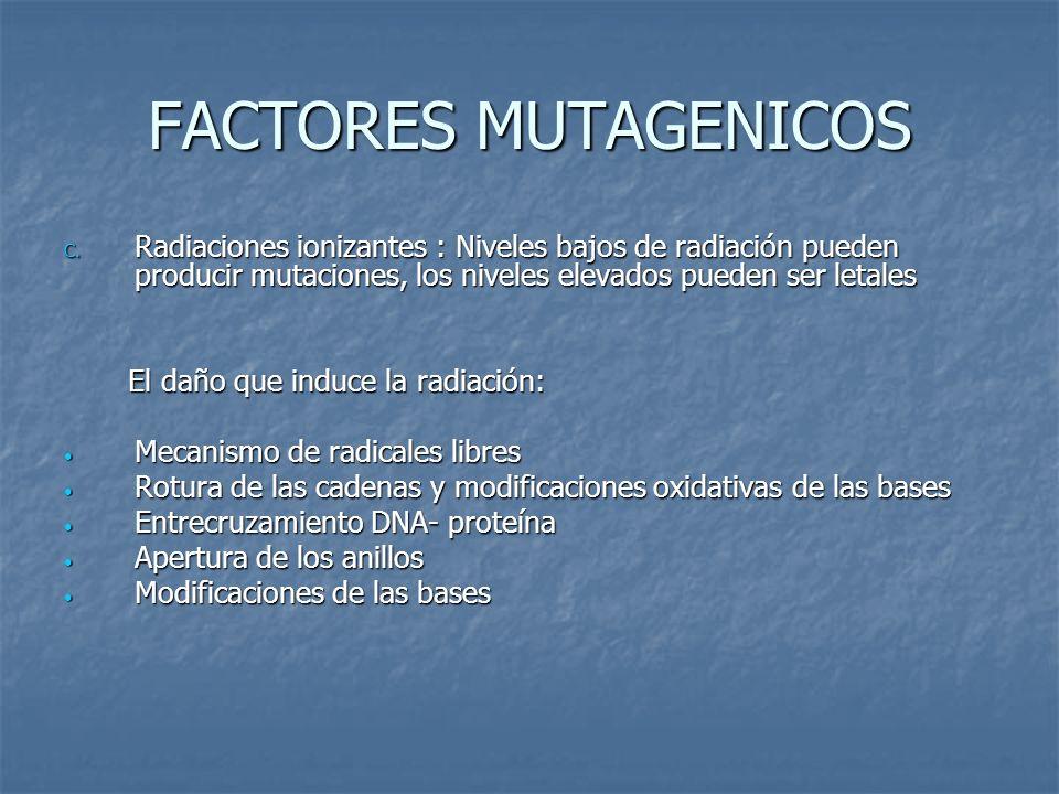 FACTORES MUTAGENICOS Radiaciones ionizantes : Niveles bajos de radiación pueden producir mutaciones, los niveles elevados pueden ser letales.