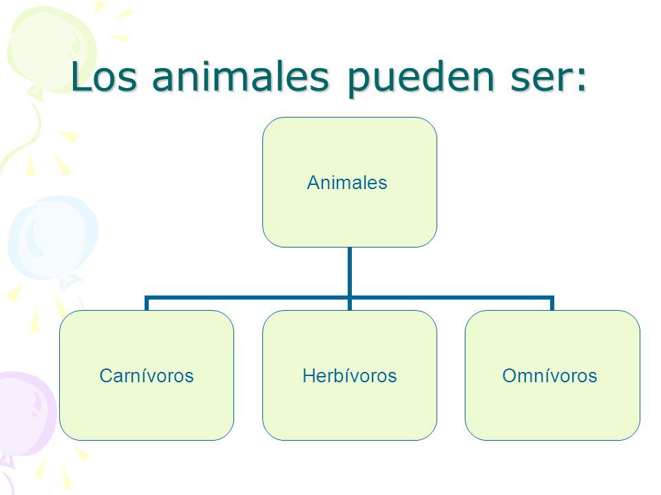 Los animales pueden ser: