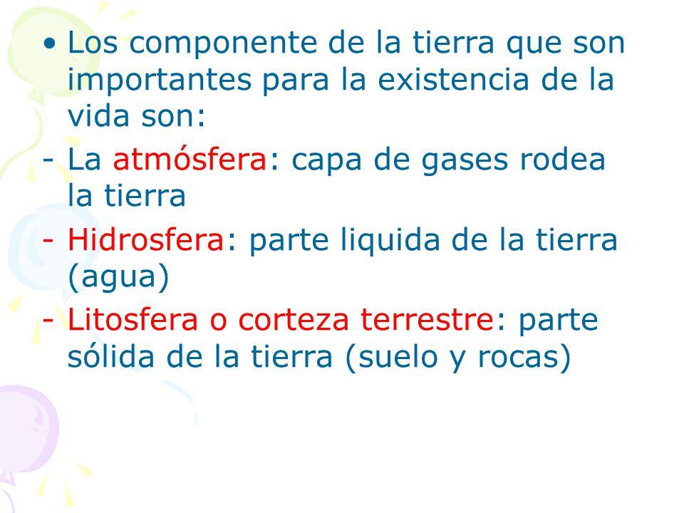 Los componente de la tierra que son importantes para la existencia de la vida son: