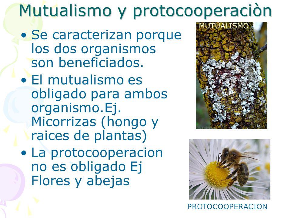 Mutualismo y protocooperaciòn