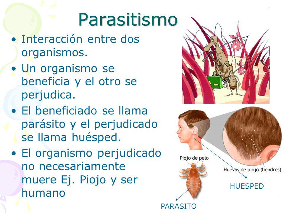 Parasitismo Interacción entre dos organismos.