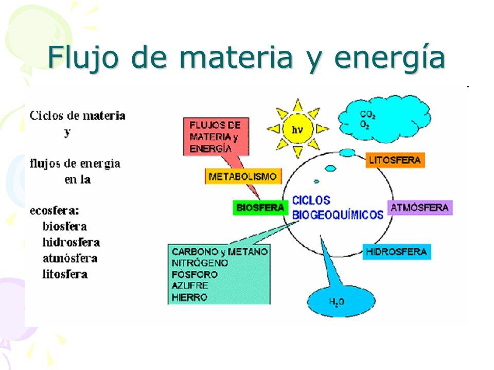 Flujo de materia y energía