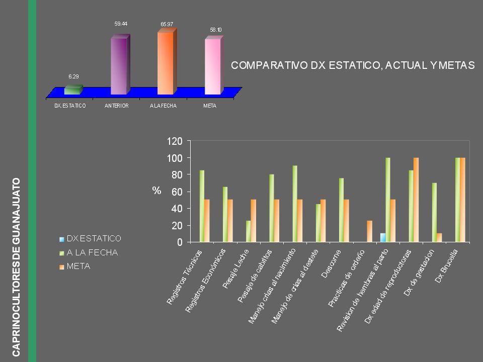 CAPRINOCULTORES DE GUANAJUATO