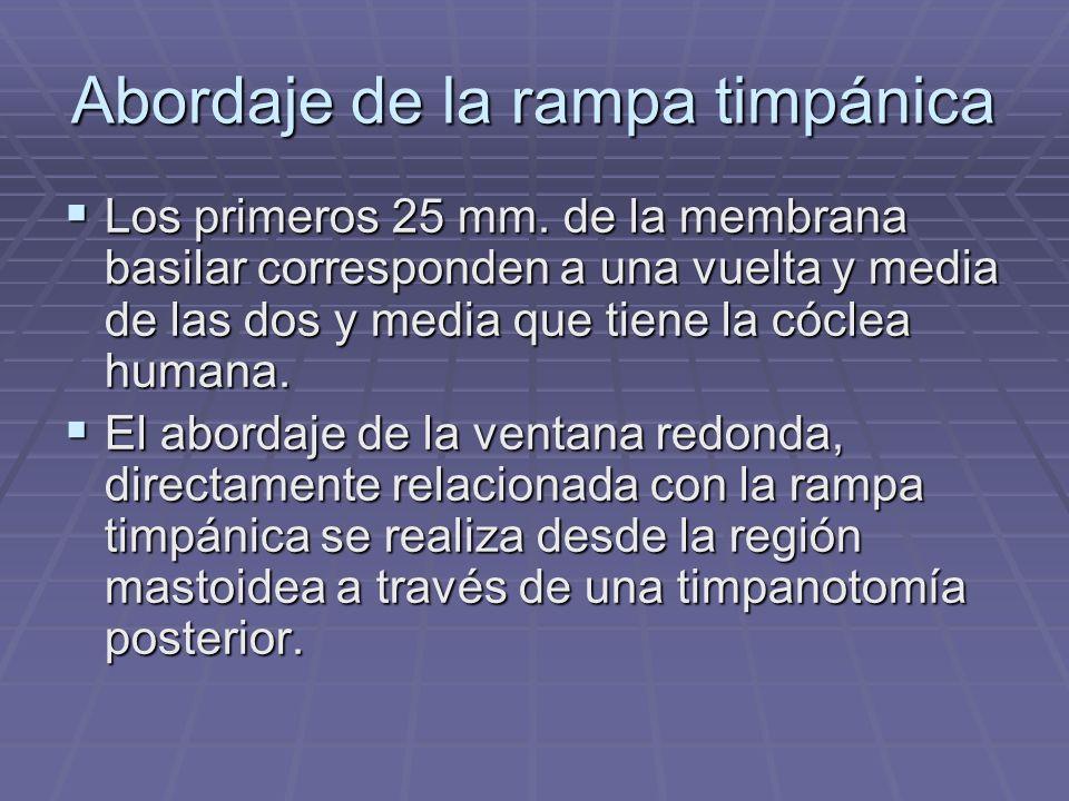Abordaje de la rampa timpánica