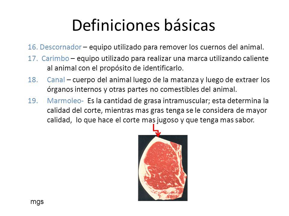 Definiciones básicas 16. Descornador – equipo utilizado para remover los cuernos del animal.