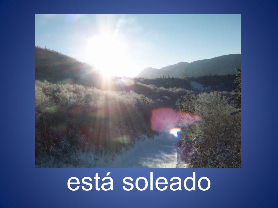 está soleado 14