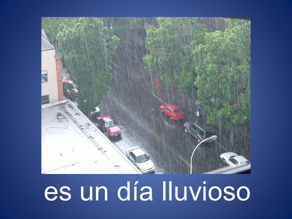 es un día lluvioso 26
