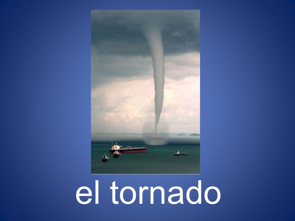 el tornado 31