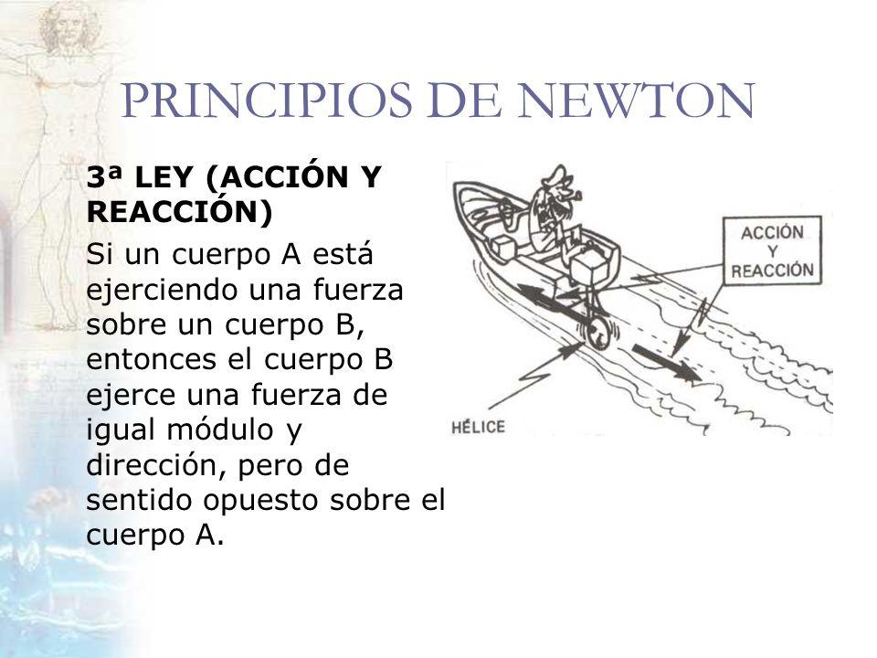 PRINCIPIOS DE NEWTON 3ª LEY (ACCIÓN Y REACCIÓN)