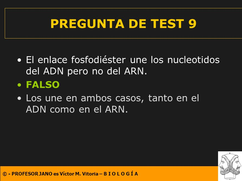 PREGUNTA DE TEST 9 El enlace fosfodiéster une los nucleotidos del ADN pero no del ARN. FALSO.
