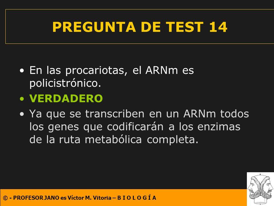 PREGUNTA DE TEST 14 En las procariotas, el ARNm es policistrónico.