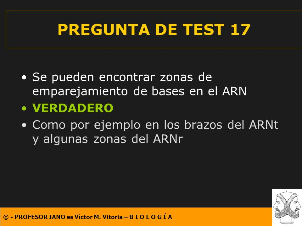 PREGUNTA DE TEST 17 Se pueden encontrar zonas de emparejamiento de bases en el ARN. VERDADERO.