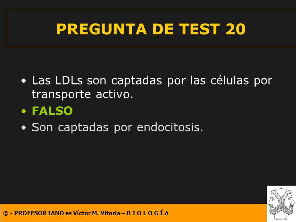 PREGUNTA DE TEST 20 Las LDLs son captadas por las células por transporte activo.