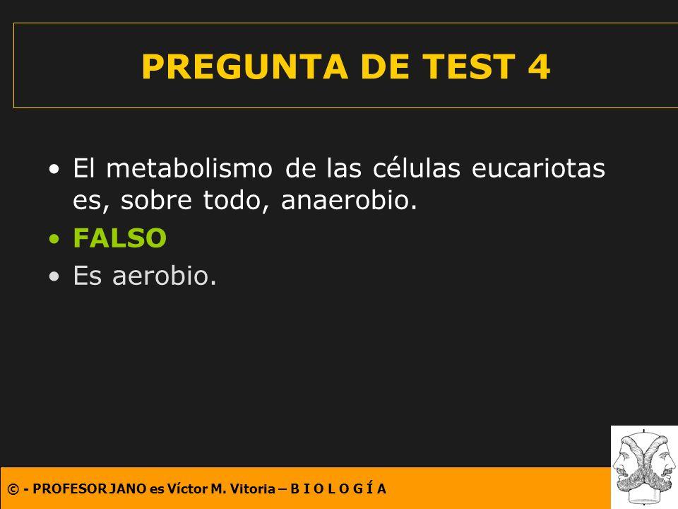PREGUNTA DE TEST 4 El metabolismo de las células eucariotas es, sobre todo, anaerobio.