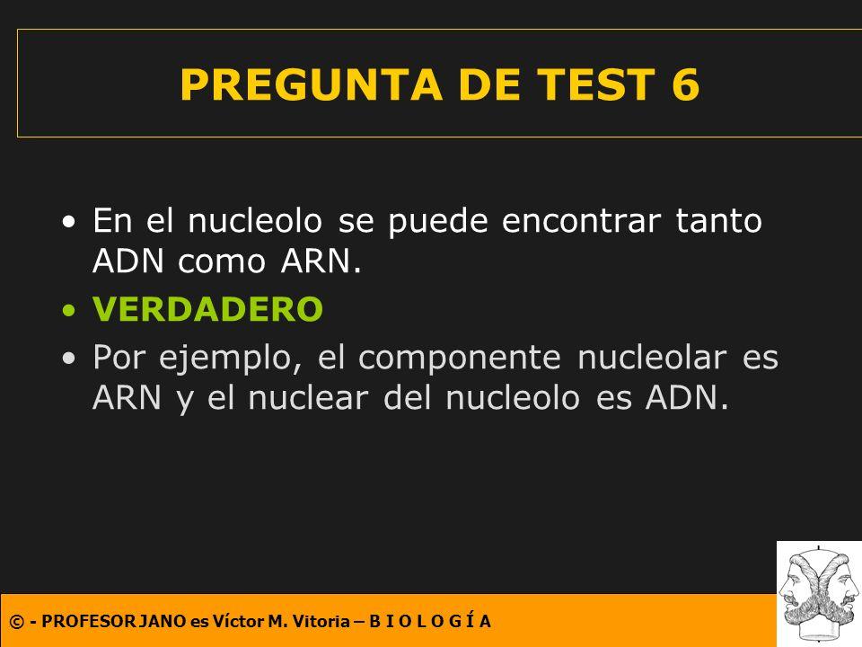 PREGUNTA DE TEST 6 En el nucleolo se puede encontrar tanto ADN como ARN. VERDADERO.