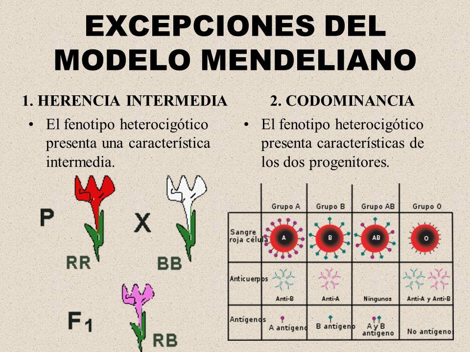 EXCEPCIONES DEL MODELO MENDELIANO
