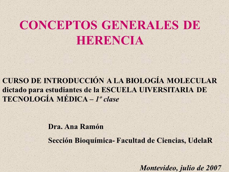 CONCEPTOS GENERALES DE HERENCIA