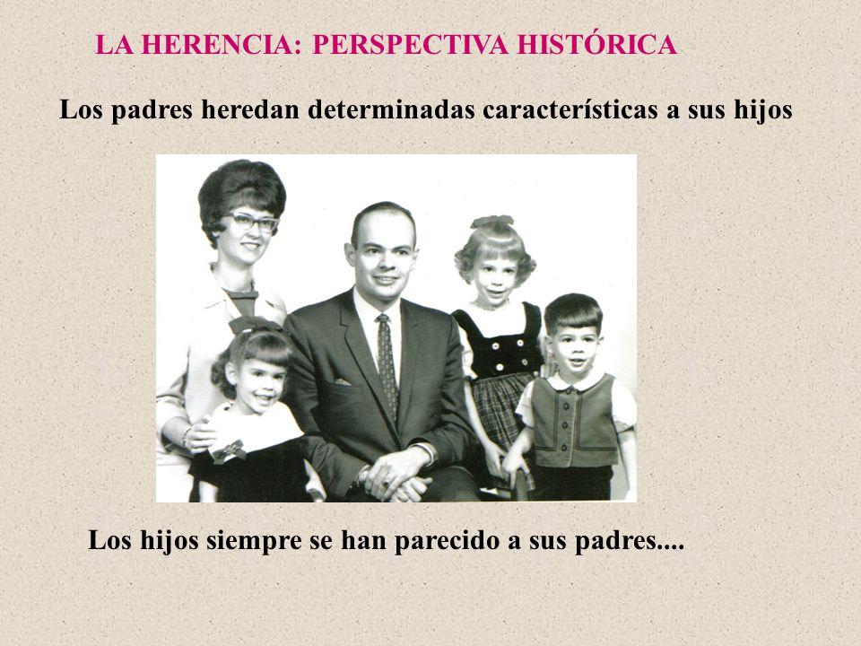 LA HERENCIA: PERSPECTIVA HISTÓRICA