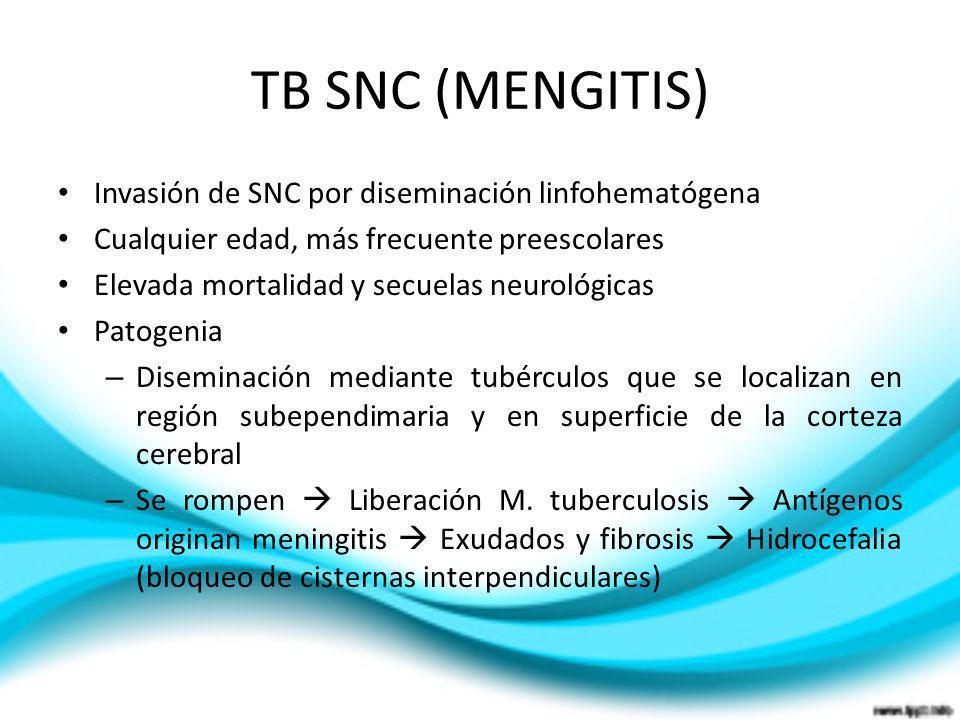 TB SNC (MENGITIS) Invasión de SNC por diseminación linfohematógena